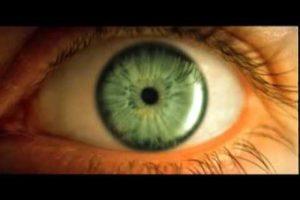 Отсутствие реакции глазного зрачка на резкий свет